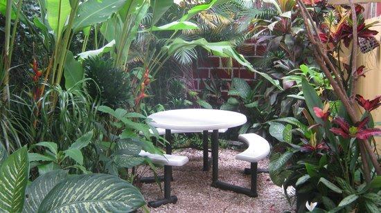 Hotel Pacande: Jardín