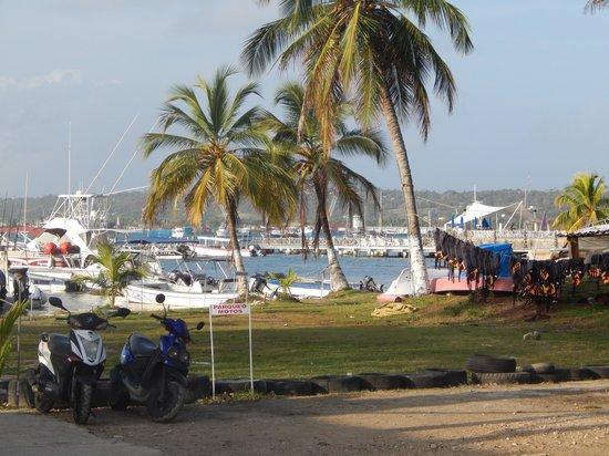 Hotel Blue Tone : Isla San Andres
