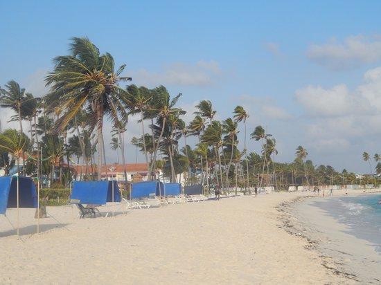 Hotel Blue Tone : Playa fte hotel
