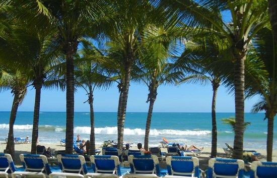 Viva Wyndham Tangerine : Beach area