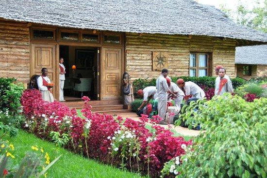 Neptune Ngorongoro Luxury Lodge : Ingresso Reception