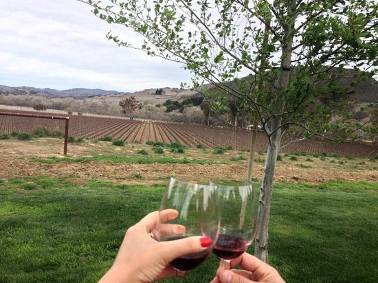 Grapeline Wine Tours Santa Barbara: Cheers