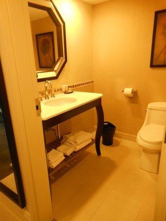 Sheraton Montreal Airport Hotel : Bathroom