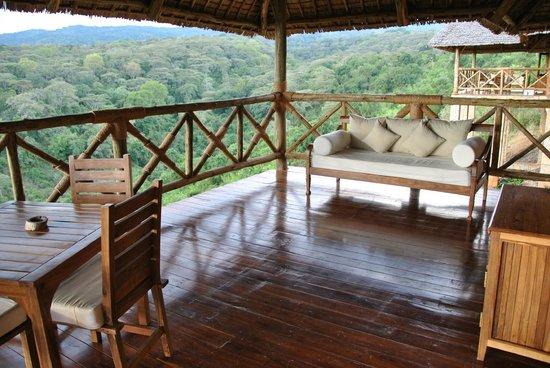 Neptune Ngorongoro Luxury Lodge : Terrazzo della cottage