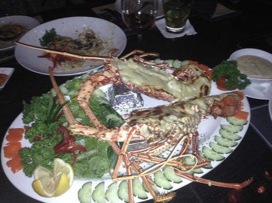 Luna Negra : 1.3kg Lobster au gratin.