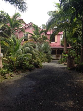 The Pink Plantation House: The house