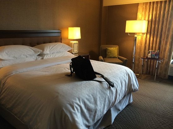 Sheraton Pittsburgh Airport Hotel : Room