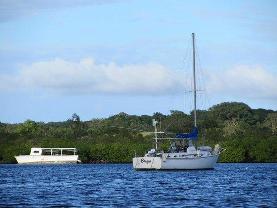 Deep Blue Resort Utila : lovely scenery