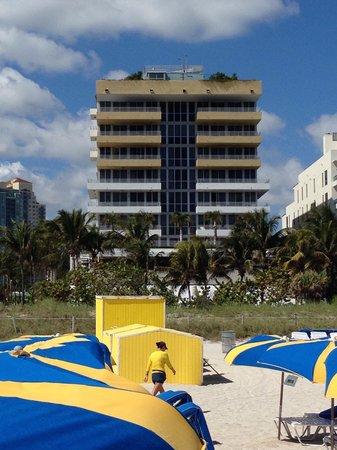 Hilton Bentley Miami/South Beach: Olhando da praia para o Hotel! Se eu tivesse visto uma foto destas antes da reserva teria me sa