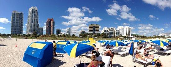 Hilton Bentley Miami/South Beach: É o metade amarelo no meio da panorâmica!