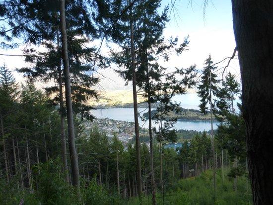 Ziptrek Ecotours: Views during Zipline adventure