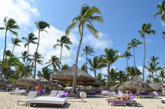 Paradisus Punta Cana Resort: Playa The Reserve