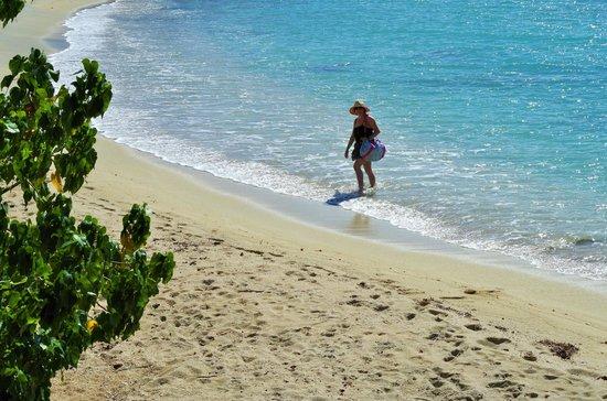 Villa Marbella Suites : The nearby beach from the Villa Marbella