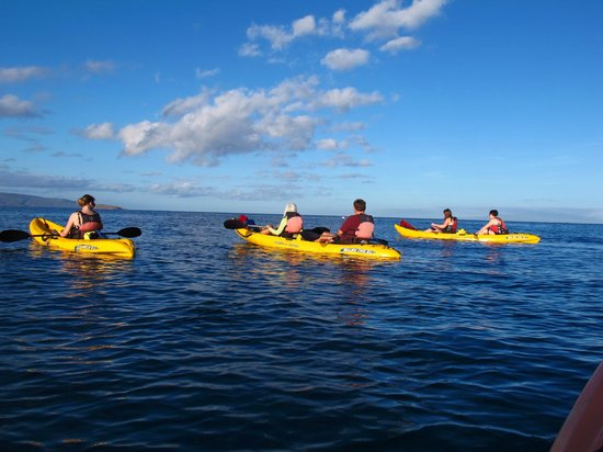 Kelii's Kayak Tours : Great Trip!