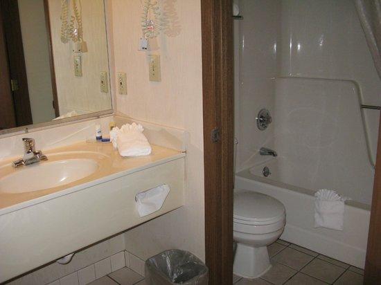 BEST WESTERN Meander Inn: Bathroom and sink area