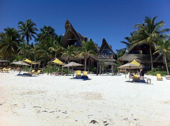 Ahau Tulum: Beach view of Ahau!