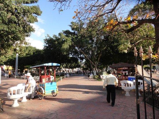 Ecotel Quinta Regia : Park in the town center.