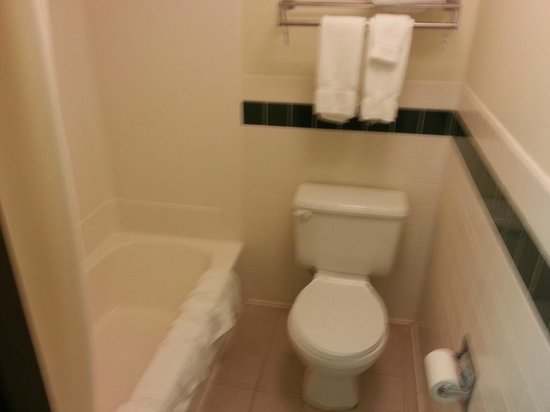 AmericInn Lodge & Suites Kearney: Yes, the toilet area is a bit small, but functional