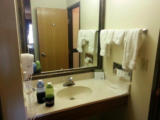 AmericInn Lodge & Suites Kearney: Vanity area