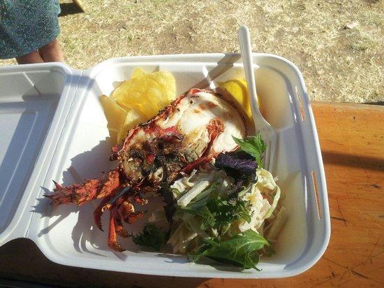 Fiordland Food Cart : Crayfish meal.