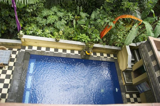 Bembengan Ubud Cottage: Pool