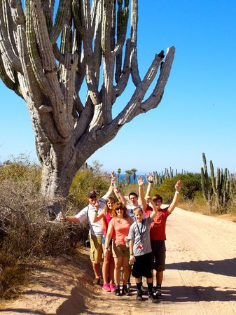 Cabo Adventures : We need more arms to compete with this cactus!  Feb-2014