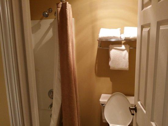 Chase Suite Hotel Overland Park: Standard Bathroom