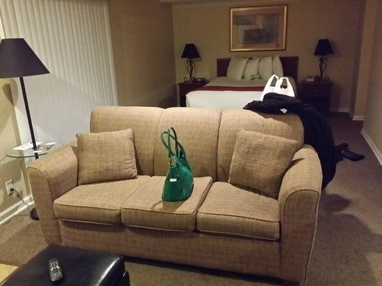 Cloverleaf Suites Kansas City: Sofabed
