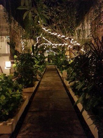 Arana Suite Hotel : Main walkway of hotel (night)