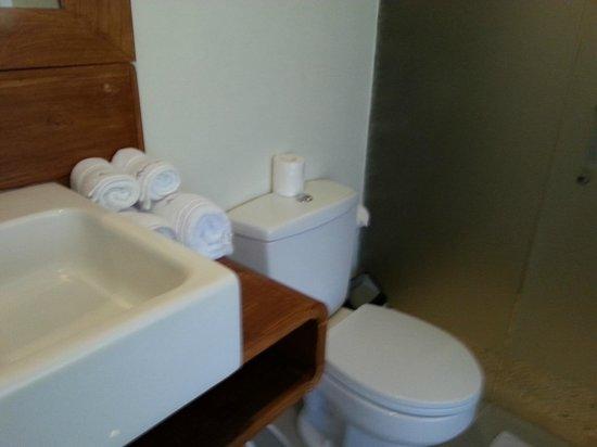 Arana Suite Hotel : Bathroom