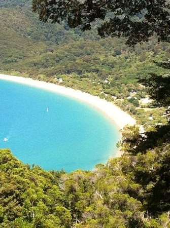 Totaranui Campground: Totaranui Beach from Headland walk