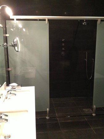 Hampton Hotel: Shower