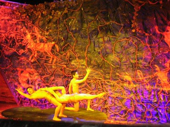 Chaoyang Theater: цирковой номер