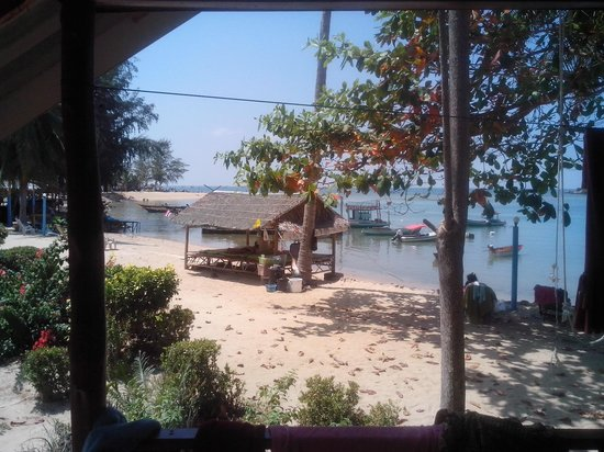 Royal Orchid Resort : y looking out the front door