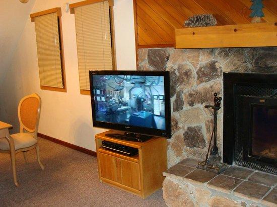 Mountain Retreat Resort, a VRI resort: Inside cabin living room