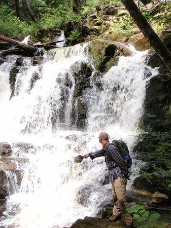 Footprint Nature Explorations: Footprint Sunshine Coast Hike Adventures