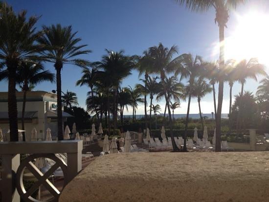 Loews Miami Beach Hotel: Nice way to start the day