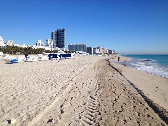 Loews Miami Beach Hotel: Beautiful beach!