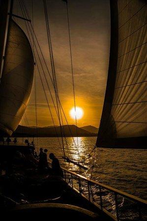 Boutique Yachting - Day Cruises & Private Charters: En attendant le coucher de soleil