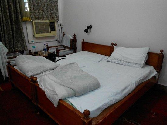 Hotel Padmini Niwas: Room from the door
