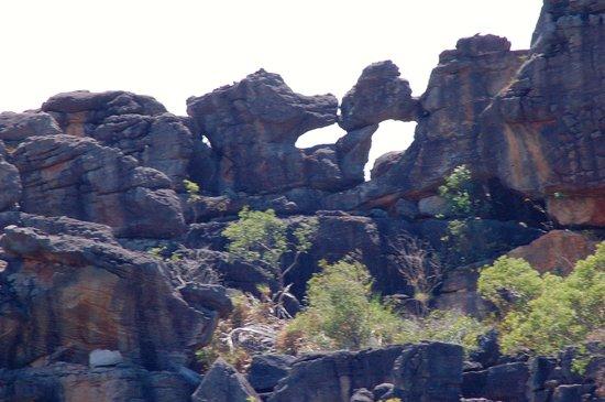 Guluyambi Cultural Cruise: more sights along the way