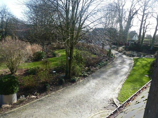 Le domaine des platanes : Le jardin bien arboré