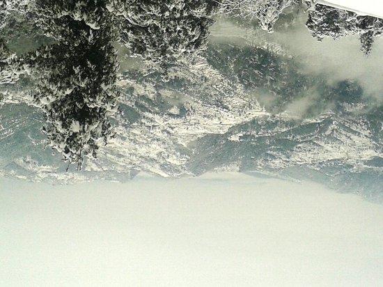 Te Aroha Dhanachuli: view