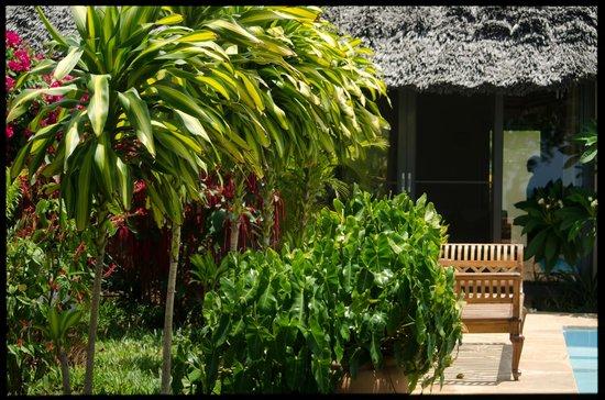 Zanzi Resort: Garden!