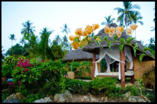ZanziResort : The Villa