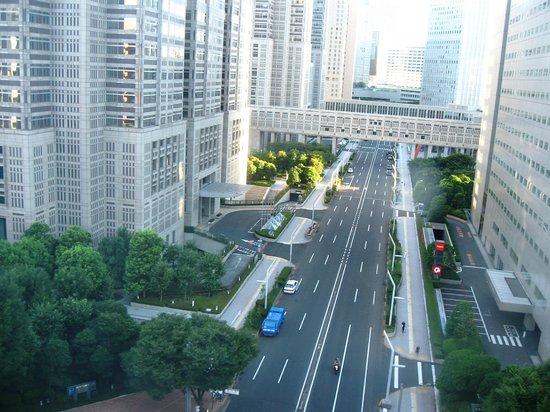 Shinjuku Washington Hotel Main: View from the room