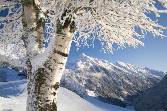 69 poloha alpin privat
