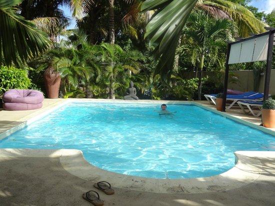 Bleu De Toi Boutique Guest House: Herrlicher, sauberer Pool