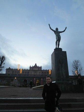 Stockholmer Schloss (Kungliga Slottet): jan 2014