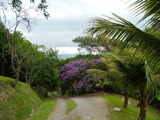 Cabanas do Araca Villa: Trail from pool to cabanas